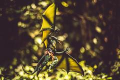 The Savage Land (3rd-Rate Photography) Tags: sauron karllykos marvellegends toy toyphotography actionfigure xmen pteranodon dinosaur savageland green canon 50mm 5dmarkiii jacksonville florida 3rdratephotography earlware 365 marvel
