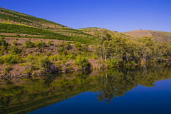 Landscape and reflections. (ost_jean) Tags: douroriver nikon d5300 tamron sp af 1750mm f28 xr di ii vc ld ostjean portugal porto europa nature natuur mountain montagne bergen