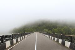 Misty Morning (David Khutsishvili) Tags: georgia ratcha shaori bridge lake tree forest wood leading lines nikon fog misty morning moody dkhphoto davitkhutsishvili