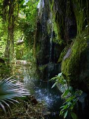 孙文纪念公园 07 (C & R Driver-Burgess) Tags: waterfall rock moss pool pond fern green splash wet moist spray plants face