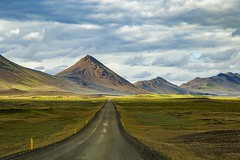 North-eastern highlands, Iceland, 2018 (Photox0906) Tags: iceland islande europe track road green desert remote clouds cloudy f901 adventure traveling travel journey panorama panoramic landscape icelandic straight grass grey light daylight hills highlands