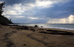 Early morning Bingal Beach (judyclayton) Tags: missionbeach farnorthqueensland cassowarycoast bingalbay