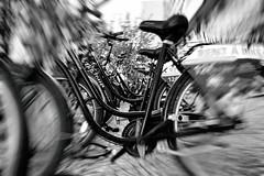 Rent a bike - black bicycles (Pascal Volk) Tags: berlin mitte karlliebknechtstrase berlinmitte bicicletas bicycles fahrräder leihräder rentalbikes bicicletasdealquiler cycles artinbw schwarz weis black white blackandwhite schwarzweis sw bw bnw blancoynegro blanconegro wideangle weitwinkel granangular superwideangle superweitwinkel ultrawideangle ultraweitwinkel ww wa sww swa uww uwa canonpowershotg1xmarkiii 15mm dxophotolab dxoanalogefexpro nikcollection