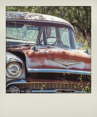 Seen Better Days (Maureen Medina) Tags: maureenmedina artizenimages old vintage classic 1950s car auto chevy chevrolet rusty abandoned