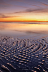 Calm, beach, color all that I love no need more to immortalize these magnificent end of the day. (ylemort) Tags: sunset nature beach sea dusk sand landscape outdoors reflection scenics coastline water sky sunlight orangecolor beautyinnature summer sunrisedawn sun nopeople everypixel