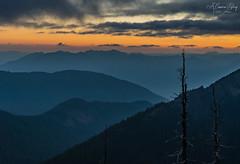 Sentinels in Blue (A Camera Story) Tags: backpacking giffordpinchotnationalforest goatrockswilderness mountains pnw southcascades sunset usa washington sonya7iii sony24105mmf4g
