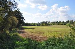 South Norfolk countryside (Kirkleyjohn) Tags: norfolk countryside fields