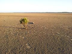 Walk around The Bluff from beach level (Glenn3095) Tags: inverloch natural scenery