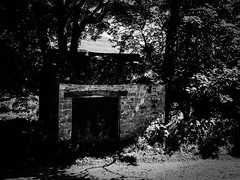 rnor81089.jpg (Robert Norbury) Tags: fuckit somearelandscapessomearenot icantbearsedkeywording fineartphotography blackandwhite photographer itdoesntmatterwhattheyarepicturesoftheyarejustpictures itdoesntmatterwhattheyarepicturesoftheyarejustpictur