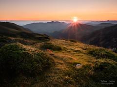Shine (Fabien Serres) Tags: formatthitech ndreversegrad06 paysage