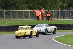 Living up to it's name! (MJ Harbey) Tags: racetrack racecar accobra hairycanary yellowaccobra goodwood goodwoodrevival2017 nikon d3300 nikond3300 lindsaybridges ferrari250swb newallstippler