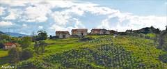 EL COLOR DE MIS PRADOS (Angelines3) Tags: nwn nubes cielo prados árboles casas campos monte cantabria martesdenubes