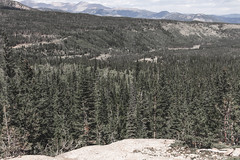 08272018-78 (ReesKlintworth) Tags: colorado hike rockymountainnationalpark