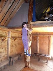 Storholmen (davidmcnuh) Tags: sweden ursulab ladder platform trunk viking museum openair openairmuseum village vikingvillage
