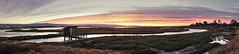 Wide open space (PeterThoeny) Tags: alviso sanjose california siliconvalley sanfranciscobay sanfranciscobayarea southbay donedwardssanfranciscobaynationalwildliferefuge donedwardsnationalwildliferefuge donedwards wildliferefuge dusk sunset outdoor marsh water pond sea cloud cloudy sky landscape bay panorama sony a6000 selp1650 1xp photomatix hdr qualityhdr qualityhdrphotography fav100 grass