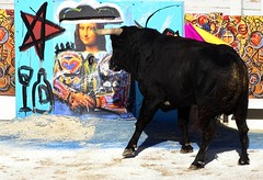 funny face to face :) (series) (aficion2012) Tags: arles septembre 2018 corrida bullfight bull toro toros tauromaquia tauromachie france francia provence taureaux taureau feria du riz juan bautista matador torero toreador goyesca goyesque gioconda burladero art arte domingo zapata