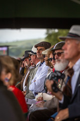 View From The Grandstand, Goodwood Revival, 09.09.18. (Geraldine Curtis) Tags: barrysheenememorialtrophy goodwoodrevival 090918troycorser mariacostella mickgrant motorbike motorbikeracing noise spectators grid