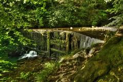 Small waterfall along Stock Ghyll, Ambleside, Cumbria. . . . #LakeDistrict #Cumbria #Ambleside #StockGhyll #HDR #LongExposure #Bracketing #Poloriser #Waterfall #Water #GreensAndBrowns (cris.gerrard) Tags: water hdr longexposure lakedistrict ambleside bracketing cumbria poloriser greensandbrowns waterfall stockghyll