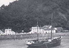 Minehead Harbour  Somerset 1950 (Bury Gardener) Tags: blackandwhite bw oldies old snaps scans monochrome mono 1950s 1950 england uk britain somerset minehead