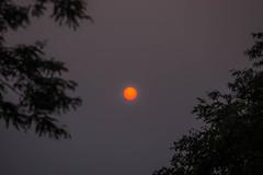 smokey haze (jimmy_racoon) Tags: 70200 f4l is canon 7d dusk haze smoke sunday 70200f4lis canon7d