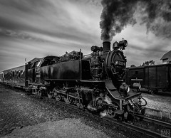 Molli unter Dampf (MAICN) Tags: 2018 bw eisenbahn blackwhite monochrome kühlungsborn schwarzweis train mono dampflock einfarbig sw steamtrain molly