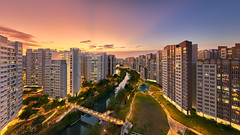 Punggol Valley (Scintt) Tags: singapore contrast directional sunset golden orange warm yellow architecture building structure lines facade dramatic surreal abstract design construction modernist light glow sun afternoon wideangle nikon panorama stitched residential estate apartments flats homes housing living space urban exploration modern scintillation scintt jonchiangphotography windows walls concrete corridor texture enclosed public real hdb garden rooftop vantagepoint skyscraper tall sky clouds green blue city cityscape dusk evening punggol stream canal river rays longexposure slowshutter