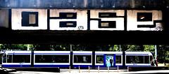 graffiti in Amsterdam (wojofoto) Tags: amsterdam nederland netherland holland flevopark amsterdamsebrug hof halloffame graffiti streetart wojofoto wolfgangjosten oase