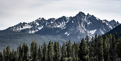Grand Mogul Peak, Idaho (maytag97) Tags: idaho sawtooth stanley mountain landscape grand mogul forest snow recreation national trees area peaks capped beautiful nature beauty green peak natural outdoors view scene high rock scenic tree maytag97 nikon d750