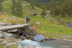 IMG_4726_DxO.jpg (Lumières Alpines) Tags: didier bonfils goodson73 mont viso tour 3841 alpes italie rando alpinisme