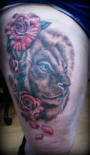 lion roses