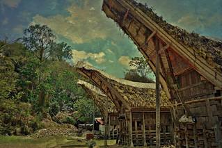 INDONESIEN , SULAWESI, Tanah Toraja in Lemo(tongkonans, 17622/10631