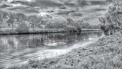 Blurred (Ori Liber) Tags: landscape park lake daylight riverbank trees nature israel telaviv city urban artistic blur blackandgray blackandwhite water river theyarkon yarkon