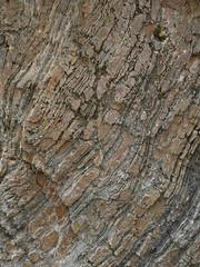 Llangrannog (Dubris) Tags: wales cymru ceredigion llangrannog seaside coast village rock strata geology