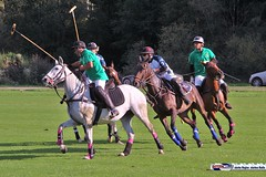 am_polo_cup18_0332 (bayernwelle) Tags: amateur polo cup gut ising september 2018 chiemgau bayern oberbayern pferd pferdesport reiter bayernwelle foto fotos oudoor game horse bavaria international reitsport event sommer herbst