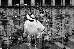 Pigeons | Bogotá | Colombia (gaalvarezc) Tags: photography street streetphotography bw blackwhite blackandwhite monochrome pigeon animal people bogota colombia square bolivar canon 50mm rain hat umbrella