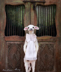Closing doors (pure_embers) Tags: pure embers laura pureembers uk england whimsical cute photography portrait lamb sheep taxidermy sculpture mary doll collector anthropomorphic doors antique bow adelemorse