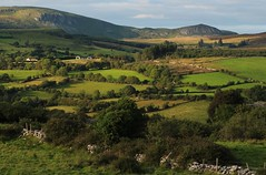 Landscape of Calry (flxnn) Tags: ireland amateur landscape landschaft autumn grassland farmland rural rustic outdoors beauty countryside color europe evening trees field nature natural fields hills hill