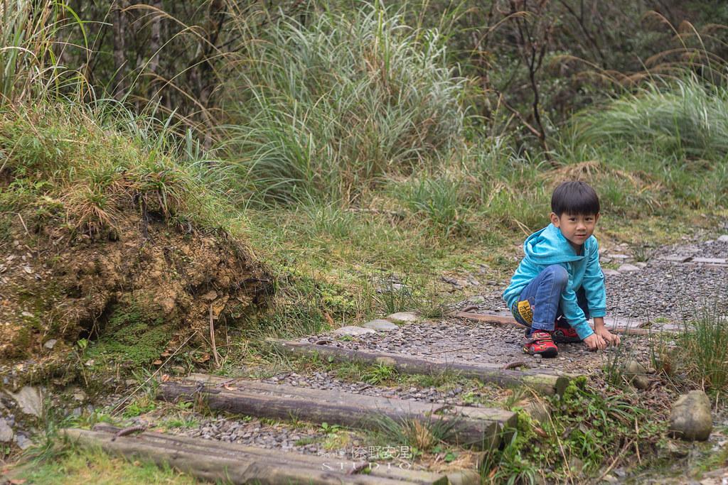 太平山翠峰湖環山步道 |走在泥濘的道路上,只為途中美景 | 宜蘭大同鄉18