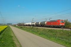 DB Cargo 193 307, Valburg (Sander Brands) Tags: trein treni train treno trenuri trenuro traktion züg güterzug rail railfanning d7000 db dbc cargo nikon br baureihe betuweroute 193 strecke siemens spotten shuttle sun uc unit nederland