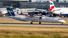 Bombardier DHC-8-402Q Dash 8 C-GPWE WestJet Encore (William Musculus) Tags: vancouver international airport yvr cyvr spotting richmond britishcolumbia canada ca cgpwe westjet encore de havilland dhc8402q dash 8 bombardier dhc8q400 q400 dhc8400 wen wr wja ws william musculus