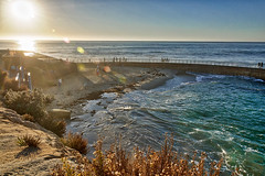 Children's Pool (Alessio Corsi) Tags: childrenspool lajolla sandiego california hdr highdynamicrange aurorahdr sunset tramonto seals seal foche foca oceano ocean pacificocean sole sun digitalphotography waves onde