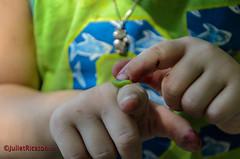 Youth researches..Schmetterlingsraupe (Steffi.K.) Tags: rot schmetterlinsraupe caterpillar butterfly little child kleinkind hands hände finger