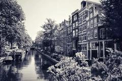 Amsterdam (Aránzazu Vel) Tags: cityscape amsterdam netherlands holland blackandwhite biancoenero blancoynegro monocromo holanda