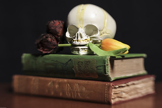 Still Life with Skull, Flowers and Books
