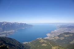 Lac Léman (Yo Gui) Tags: montagne suisse rocher de naye alpes lac bleu panorama paysage eau ciel antenne forêt flanc baie neige ville
