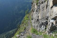 direction l'Au de Mex (bulbocode909) Tags: valais suisse mex montagnes nature arbres forêts sentiers vert falaises