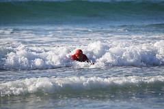 2018.09.15.07.41.20-WhompOffAustralia-025 (www.davidmolloyphotography.com) Tags: bodysurf bodysurfing bodysurfer surf beach whompoff whompoffaustralia australia newsouthwales sydney cronulla