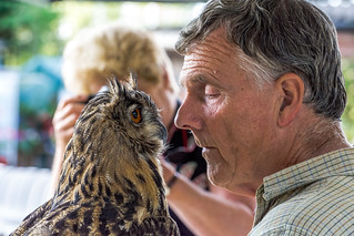 Eagle Owl with his Dad