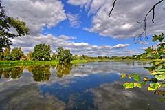 White clouds reflected (Tobi_2008) Tags: teich pond reflection spiegelung wolken clouds himmel sky bäume trees sachsen saxony deutschland germany allemagne germania platinumheartaward