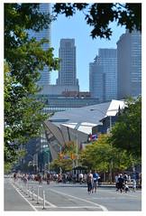 Bloor Street, Open Streets (mcfcrandall) Tags: openstreets toronto downtown urban city rom royalontariomuseum bikes people skyscrapers trees pavement street openstreetsto
